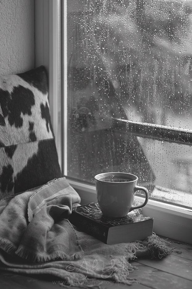 rainydaystilllife