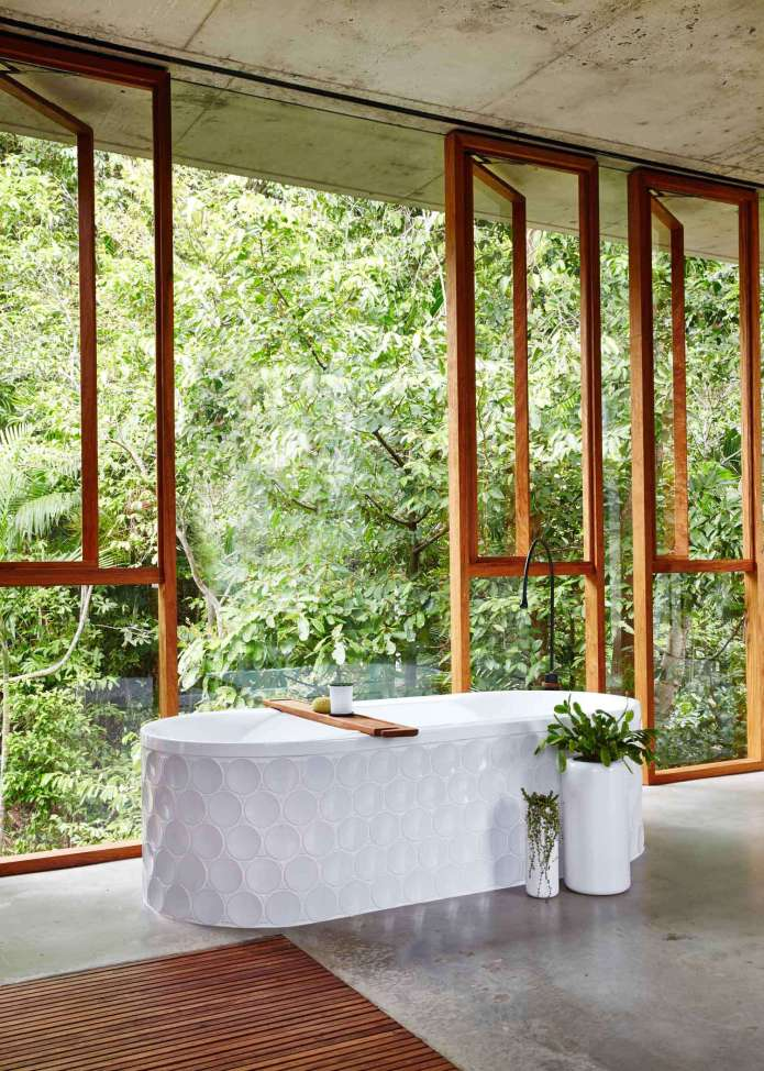 The amazing bathtub overviewing the forest.